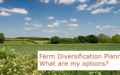 Farm Diversification Programme.